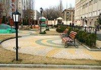 Чеченские садовники научат Петербург благоустраивать парки